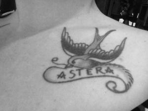 Astera Bird